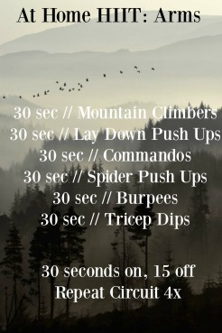At Home HIIT: Arms